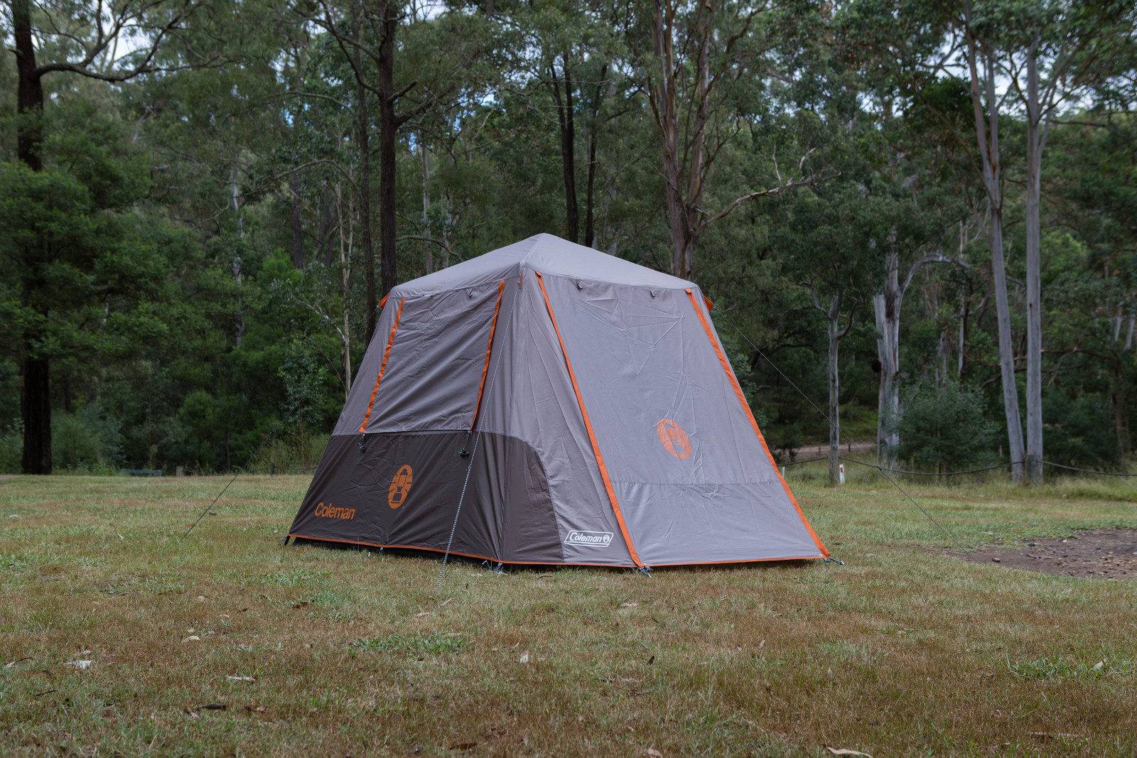 Coleman 6 Person Instant Up Tent - Silver - Full Fly & Coleman 6 Person Instant Up Tent - Silver - Full Fly - Tentworld